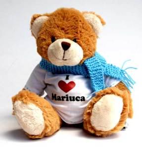 bear_mariucafront